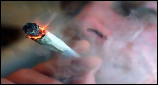 Cannabis legal y adictivo. Cuando la libertad y la salud no van de la mano.