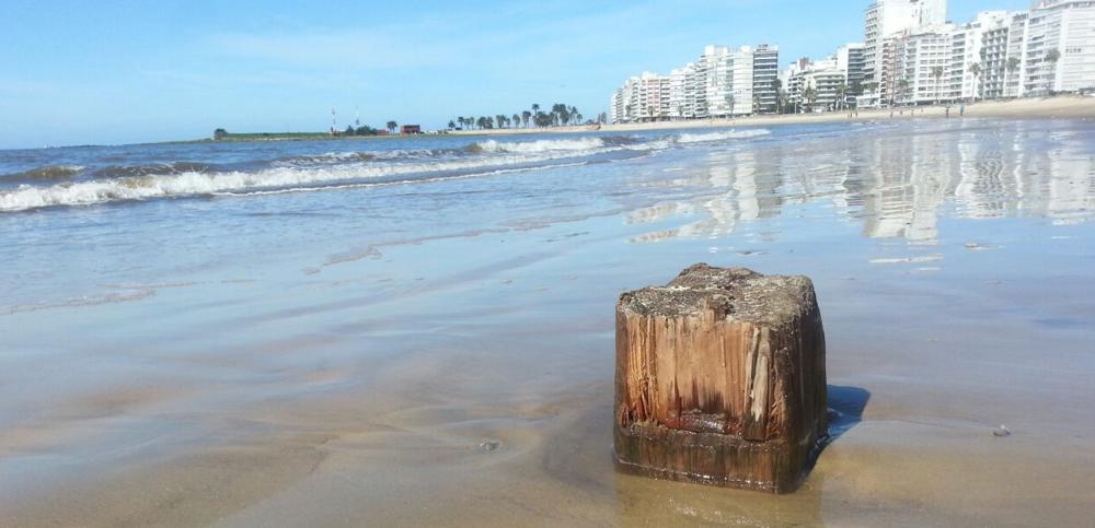 Los restos del antiguo hotel que aparecieron en la playa de Pocitos