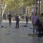 Los gatos inundan Barcelona luego del atentado con 13 muertos