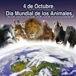 Se celebra el Día Mundial del Animal