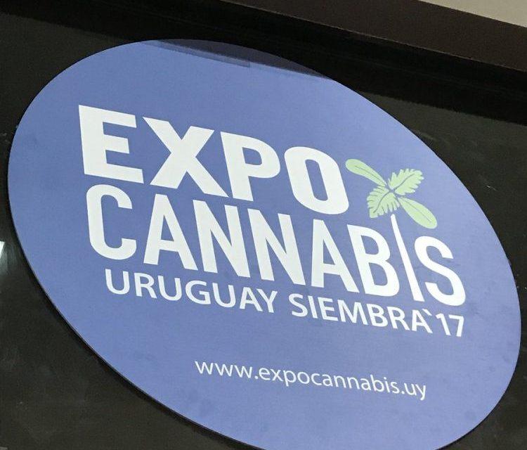 Hoy Creer o Reventar desde la Expo Cannabis