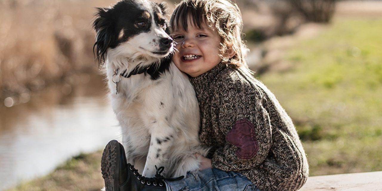 Terapia asistida con perros en niños