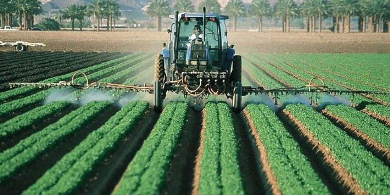 ¿Cómo evolucionó la producción agropecuaria en 2018?
