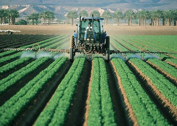 El real estado de situación del agro uruguayo