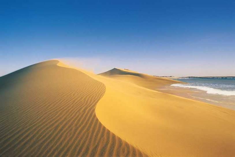 """""""Primero educamos y luego multamos a quienes afecten las dunas"""""""