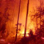 Incendio de 70 hectáreas en Tacuarembó
