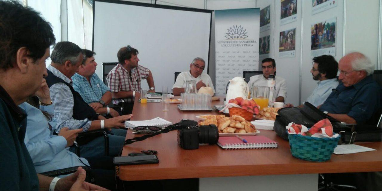 Expoactiva: conflictos en el agro, sequía y la brecha entre el campo y la ciudad