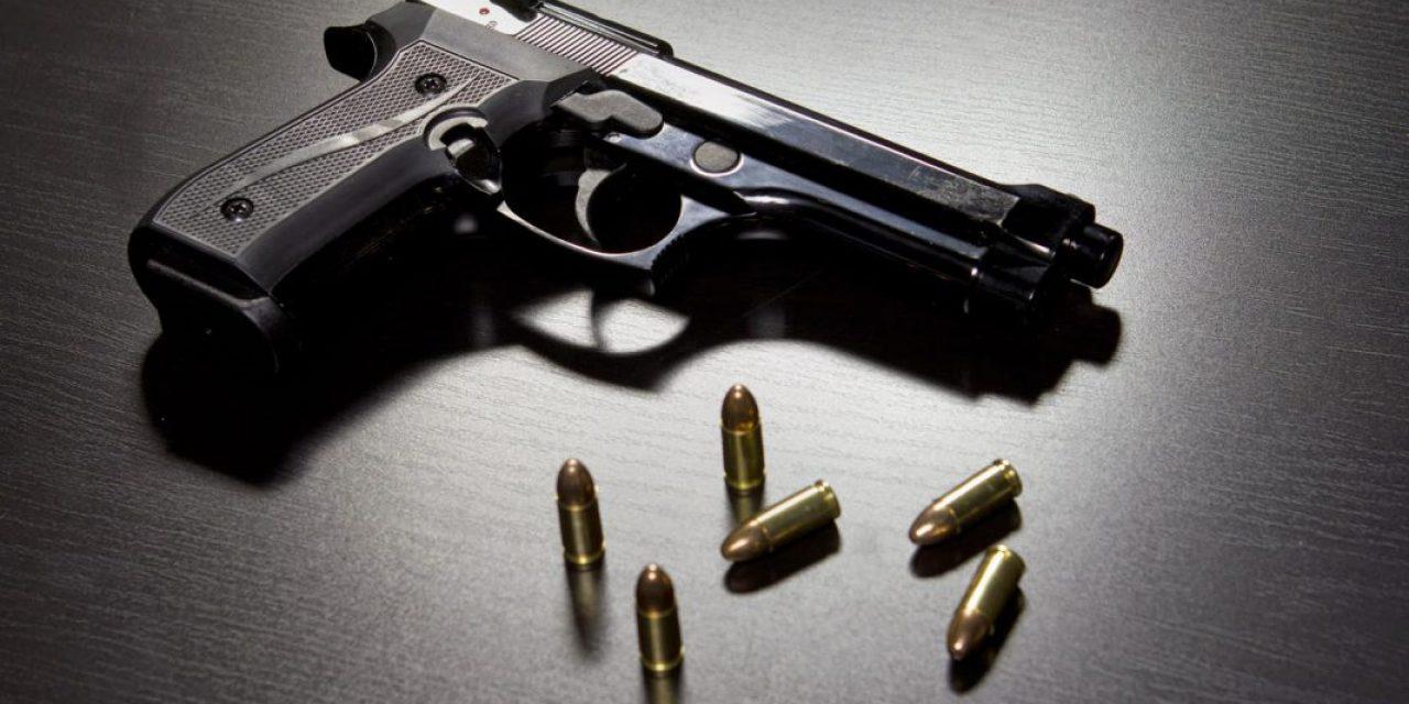Bergara insiste en crear política de desarme