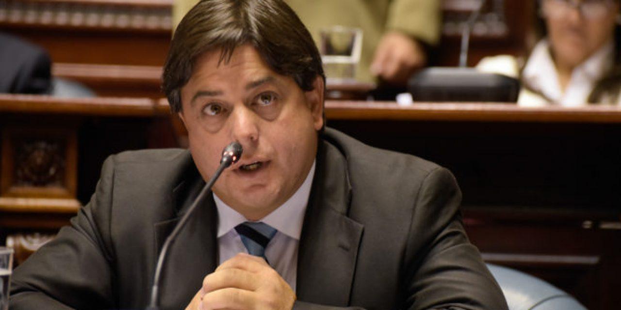 Partido de la Gente anuncia a diputado Peña como candidato a vice; la convención será en agosto