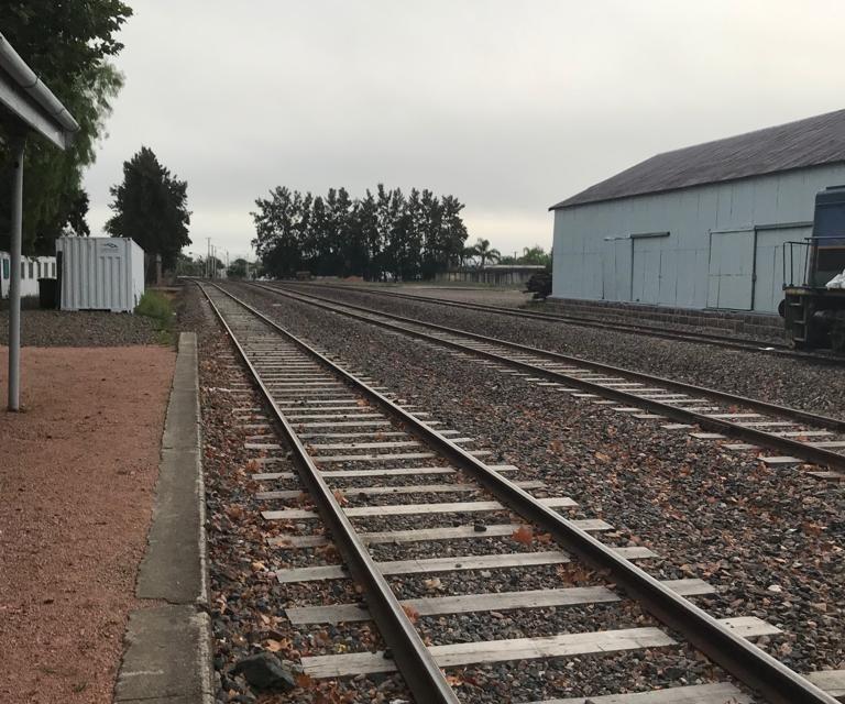 """Grupo contrario a Upm denuncia que el gobierno infla los costos para """"no alterar el tren de Upm"""""""