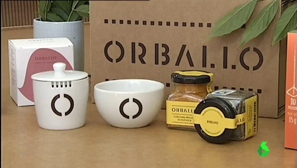 La única plantación industrial de té de la Europa continental está en Galicia