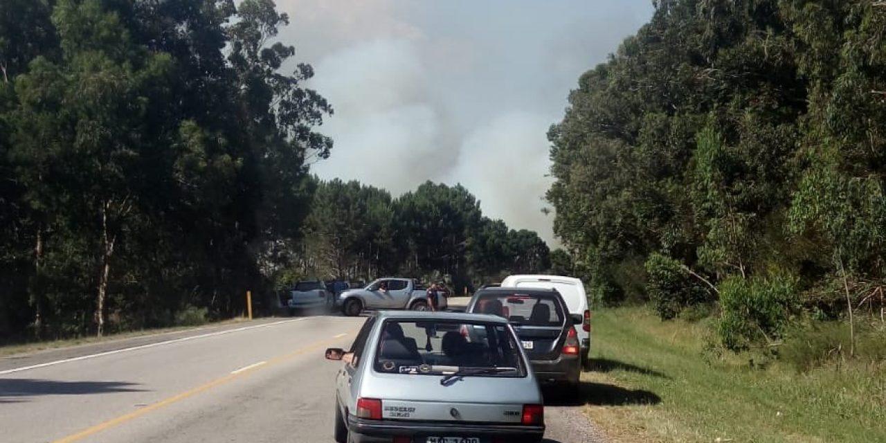 Dos incendios en simultáneo afectan Rocha y la ruta 9 está cortada