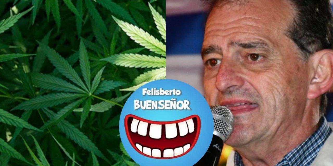 """""""Cómo quedará la cabeza de los cabildantes después de una pitada de marihuana"""": la columna de Felisberto"""