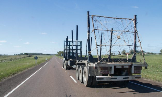 Transporte de carga definirá este miércoles estrategia de lucha en plenario nacional