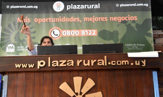 Primer día del Remate de Plaza Rural con balance positivo