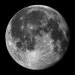 La vida llegó a la Luna luego de que una nave especial se estrellara en ella