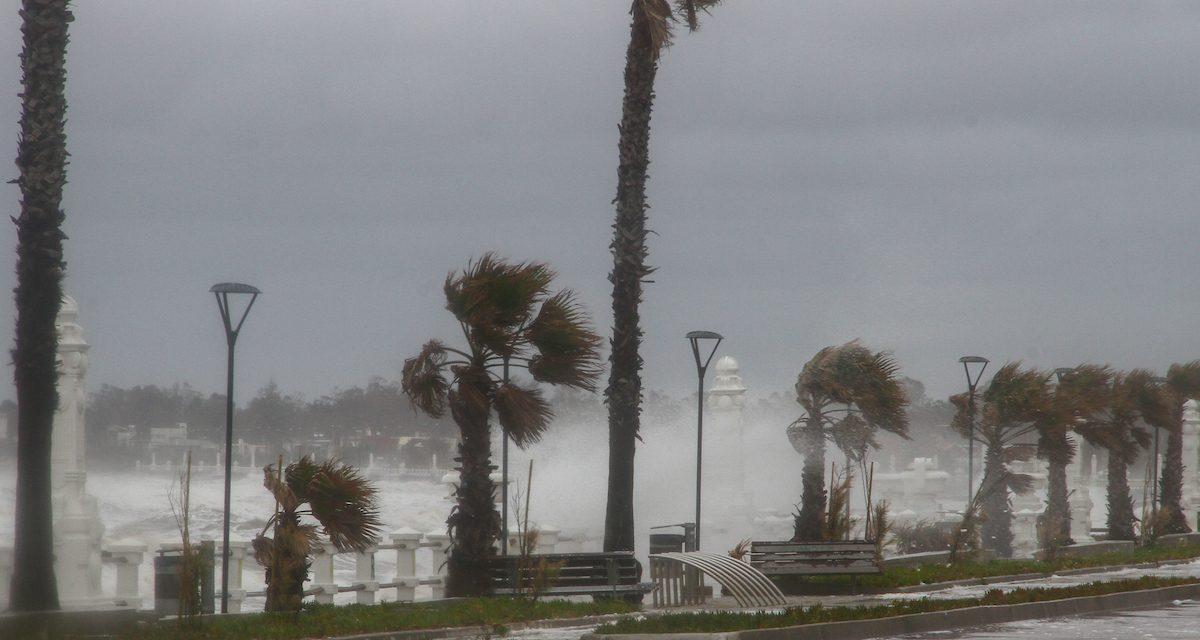 Rigen alertas meteorológicas para la franja costera por vientos muy fuertes y persistentes