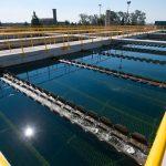 OSE planea una nueva reserva de agua en Casupá