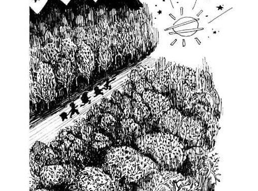 Tierra de Nadie (31/10/20) Último de los sábados