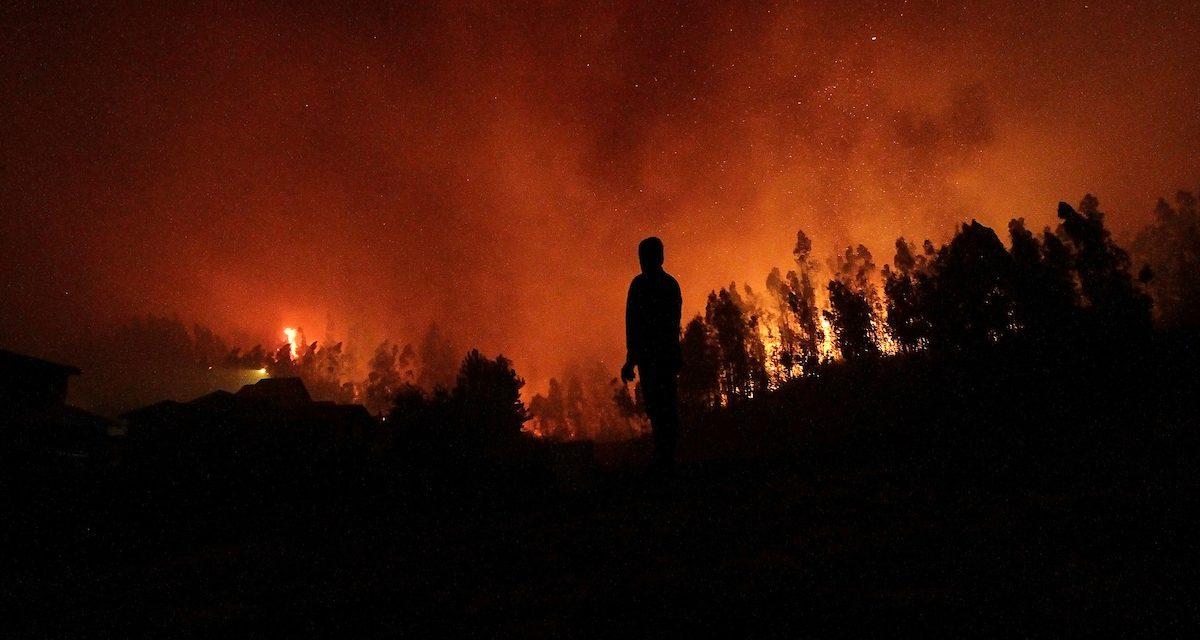 Incendio en Punta del Diablo: el fuego está controlado y Bomberos realiza tareas de enfriamiento