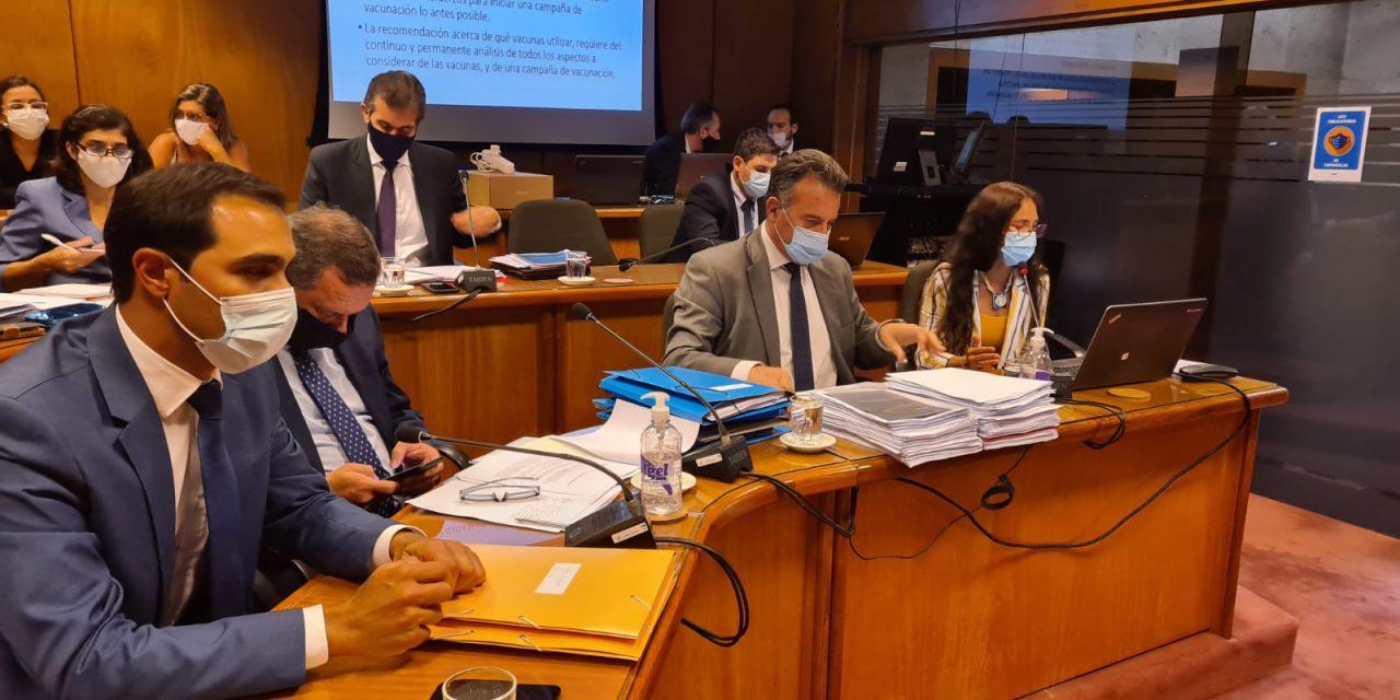 El ministro Salinas comparece ante la Comisión de Salud del Senado por el avance del Covid-19 y la negociación por la vacuna