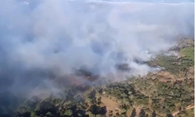Bomberos combate incendio en Punta del Diablo, hay una persona detenida
