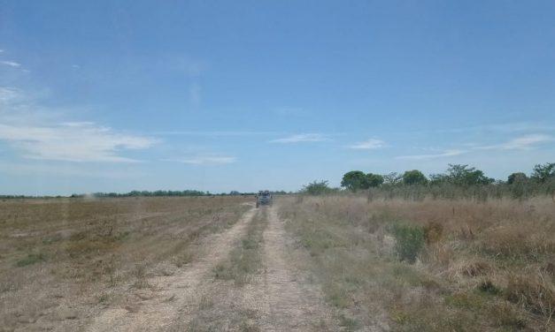 Restos encontrados en Florida pertenecen a Carolina Escudero