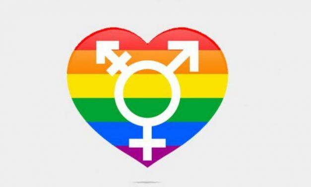¿Cuál es la diferencia de ser bisexual o pansexual?