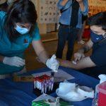Destacan la respuesta de uruguayos en donar plasma hiperinmune para ayudar el tratamiento de pacientes con Covid-19