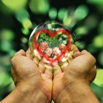 Cómo dirigir la energía y concentrar la mente