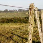 """Mattos dijo que """"la seguridad rural es una meta de gobierno"""" y confirmó reducción de denuncias de delitos"""